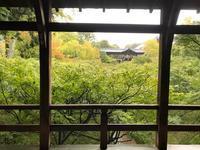 東福寺 同聚院店開始しました - 【飴屋通信】 京都の飴工房「岩井製菓」のブログ