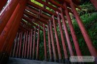 祐徳稲荷神社の赤鳥居 - Mark.M.Watanabeの熊本撮影紀行