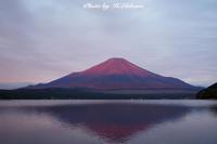 今朝の赤富士 - 写真家 海老原 勇人