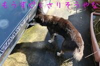青空ピカーン! - HAMAsumi-Life