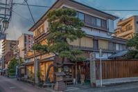 記憶の残像 2017年 花の東京 -51 東京都 青梅市 - ある日ある時 拡大版