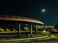 公園の夜景 - シセンのカナタ