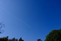 飛行機が飛んでいます。 - 平凡な日々の中で