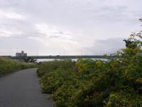 『河川敷風景と堤防近くで見た実達~』 - 自然風の自然風だより