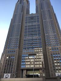 都庁で三崎まぐろのネギトロ丼 - 麹町行政法務事務所
