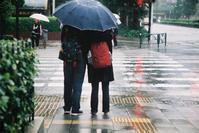 相合い傘 - BobのCamera