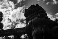 狛犬 - La La La Last Song Photo Blog