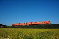 秋の空を見上げて。 - 山陽路を往く列車たち