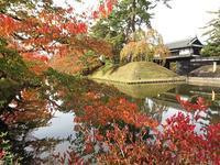 弘前城菊と紅葉まつり_2017.10.25 - 弘前感交劇場