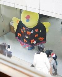 Champion キッズウエア - 【Tapir Diary】神戸のセレクトショップ『タピア』のブログです