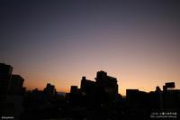 朝焼け - パピヨン小雪の徒然日記