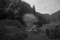 岐阜県 神岡 - Picture In A Frame
