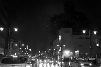 雨の繁華街 - 季節のおくりもの