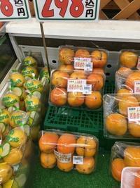 渋抜柿 - ちょんまげブログ