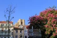 リスボンにて - ぼくの写真集2・・・Memory of Moment