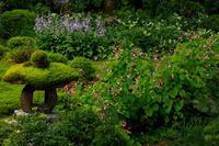 初秋の三千院 - 花景色-K.W.C. PhotoBlog