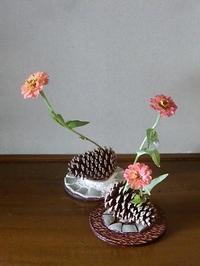 松ぼっくり、百日草、とベゴニア、シクラメン、チロリアンランプの小品花 - 活花生活(2)