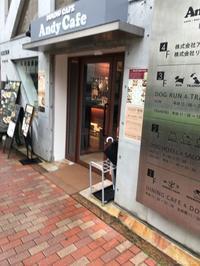 アンディカフェでランチ&ハロウィン無料撮影会@目黒 - ぺろ日記
