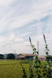 ある秋の日 - アワジシマイッシュウ(某島民)