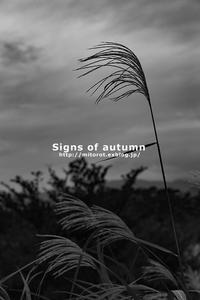 秋の気配 - GOOD LUCK!