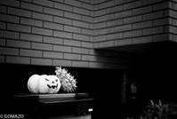 Happy Halloween - Gomazo's slow life - take it easy