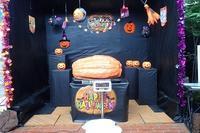 結果発表!ジャンボかぼちゃの重さは何キロ? - 手柄山温室植物園ブログ 『山の上から花だより』