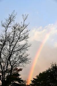 台風と虹と不機嫌 - 写心食堂