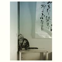 近代詩は、若山牧水の歌を〜 - 書家KORINの墨遊びな日々ー書いたり描いたり