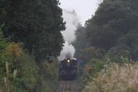 華奢な機関車が坂道を登る - 真岡・2017年秋 - - ねこの撮った汽車