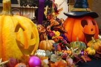 happy halloween - ゆあさ通信