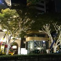 イルミネーション♪ - 表参道・銀座ネイルサロンtricia BLOG