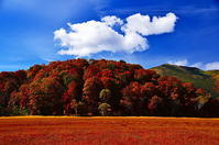 秋の浮雲は遥かな旅を続ける - 風の香に誘われて 風景のふぉと缶