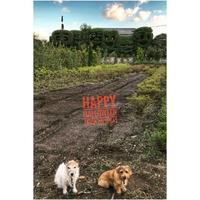 Happy Halloween - ★☆みなさんぽんちくわ2☆★