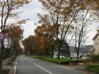 木枯らし1号の吹いた朝の稲田を見る - 妙見山麓をわたる風