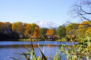 台風の後 日々のこと - 暮らしてみれば in Kitakaruizawa