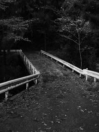 橋 - 節操のない写真館