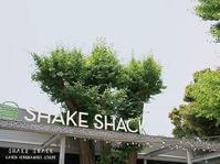 SHAKE SHACK シェイク シャック 外苑いちょう並木店 - Favorite place