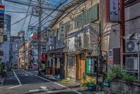 記憶の残像 2017年花の東京 -53東京都新宿区荒木町 - ある日ある時 拡大版
