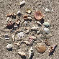 台風のあと - on the shore