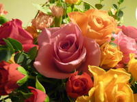 オータムローズ - 花に親しむ(フラワーデザイン)