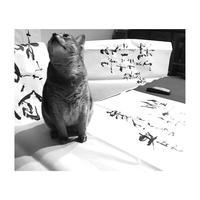 書いていると楽しい♫ - 書家KORINの墨遊びな日々ー書いたり描いたり