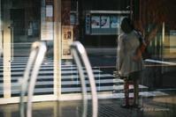 ガラスに反射する横断歩道 - BobのCamera