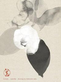 美登さんの椿 - g's style day by day ー京都嵐山から、季節を楽しむ日々をお届けしますー