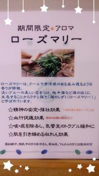☆ ローズマリー ☆ - リラクゼーション マッサージ まんてん