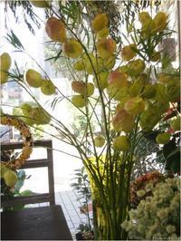 お庭も定期的にメンテナンス - ルーシュの花仕事