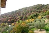 人生最良のときは今、英語版・スペイン語版ディーパク・チョープラ瞑想講座開講中 - イタリア写真草子 - Fotoblog da Perugia