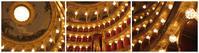ヴェルディ「リゴレット」 ローマ歌劇場 - ばはる☆あびあど