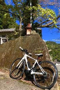 クロスバイクとやらに乗ってみよう!(無謀) - はな花季行/おっ!オッ?