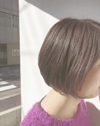 陽の光 × bob × purple ☆ - COTTON STYLE CAFE 浦和の美容室コットンブログ