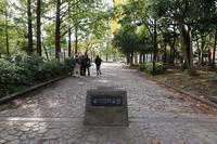■東京ゲートブリッジを歩く17.11.4 - 舞岡公園の自然2